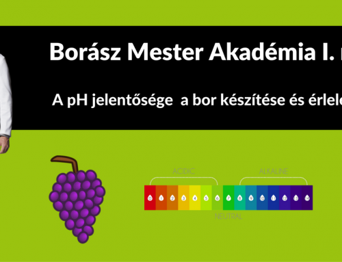 Borász Mester Akadémia I. rész – A pH jelentősége  a borkészítés és érlelés során