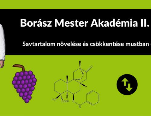 Borász Mester Akadémia II. rész – Savtartalom növelése és csökkentése mustban és borban
