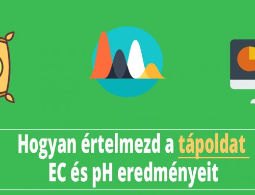 Tápoldat EC mérés és Talaj EC mérés eredményeinek elemzése