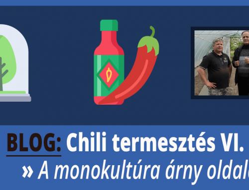 Monokultúra problémái – Chili termesztés VI. rész